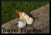 Travel Express Travlebug