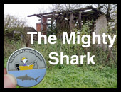 The Mighty Shark Geocoin